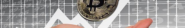 echipa de marketing bitcoin